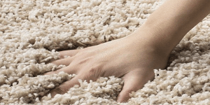 Frieze carpet is a fun, soft, and casual choice for your home. Get your free estimate now!